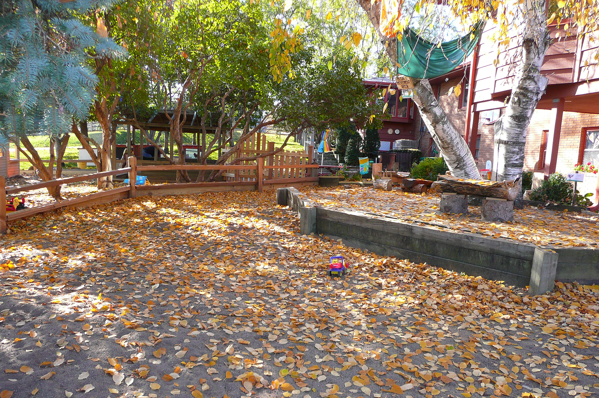 CCDS Outdoor Play Area Image