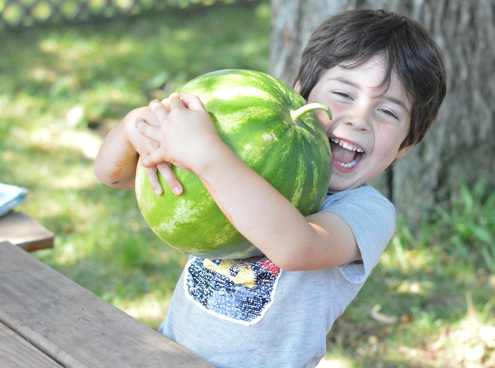 Summer Camp Home Page Image